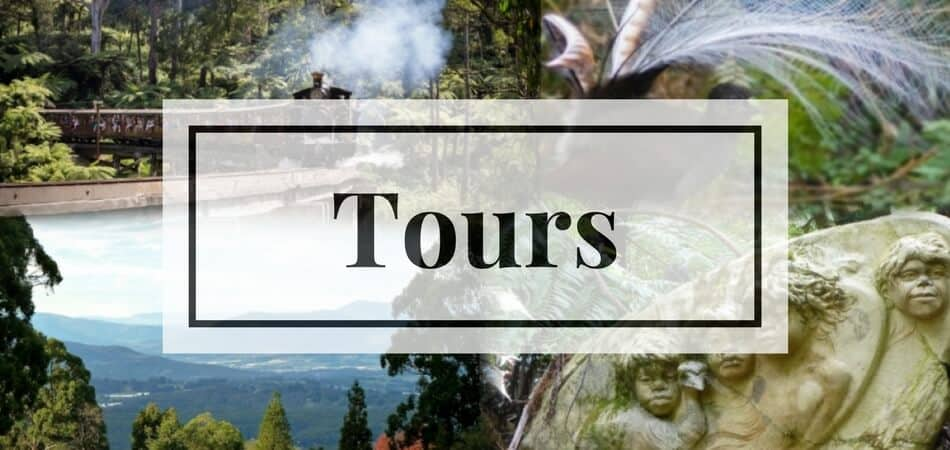Tours to Dandenong Ranges