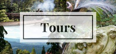 Tours to Dandenong Ranges