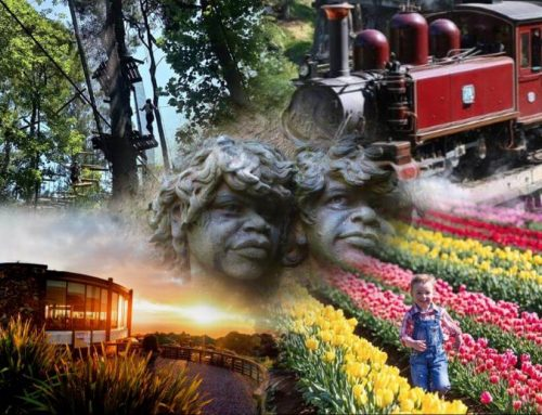 Dandenong Ranges Attractions – What To See & Do