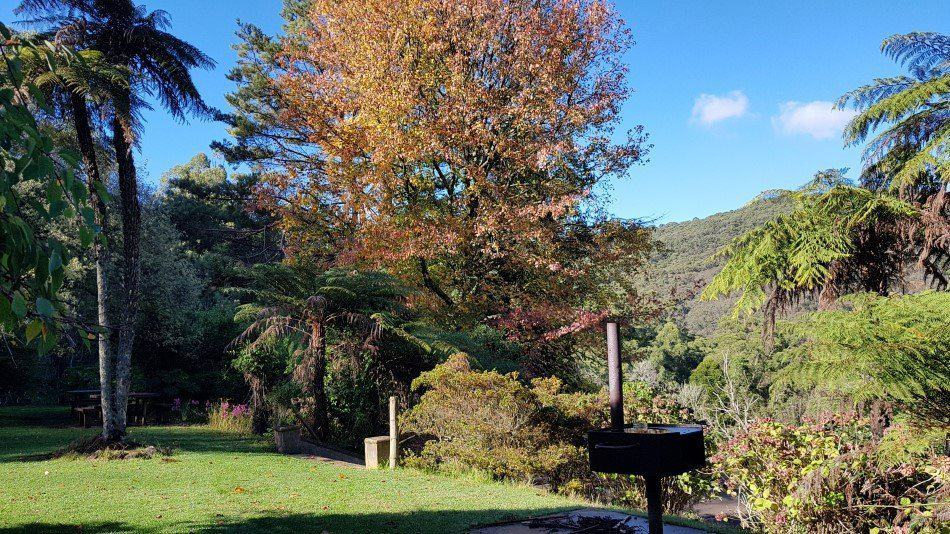 Autumn colour in the Doongalla Homestead gardens. Dandenong Ranges National Park