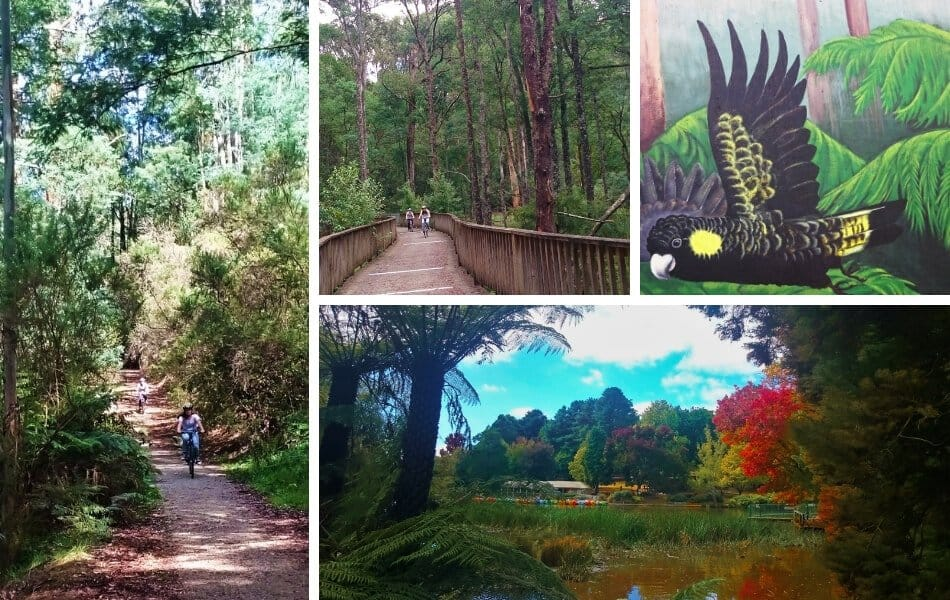 Emerald to Gembrook Multi Use Walking and Bike Riding Trail