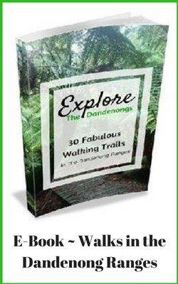 E Book - Best Walking Tracks in the Dandenong Ranges
