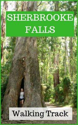 Sherbrooke Falls, Dandenong Ranges