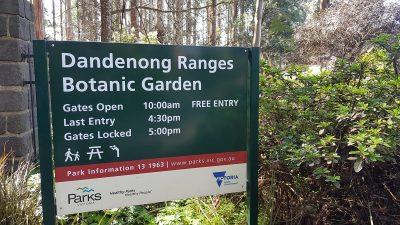 Dandenong Ranges Botanic Garden | National Rhododendron Gardens Olinda