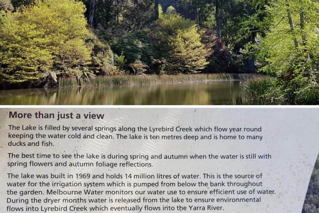 Ornamental Lake in the National Rhododendron Gardens, Dandenong Ranges, Melbourne