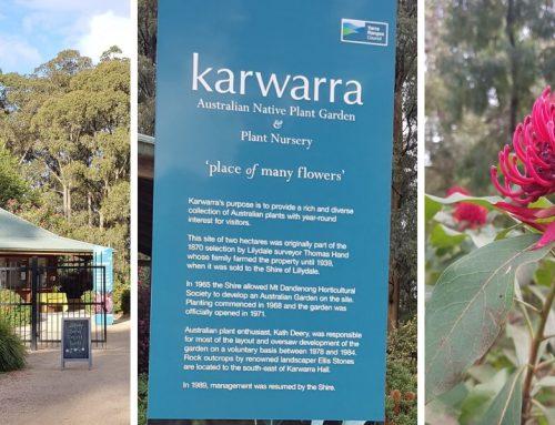 Kawarra Australian Native Plants and Nursery