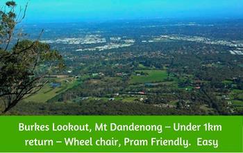 Burkes Lookout Dandenong Ranges