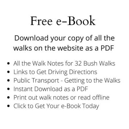 Guide to Walks in the Dandenong Ranges National Park