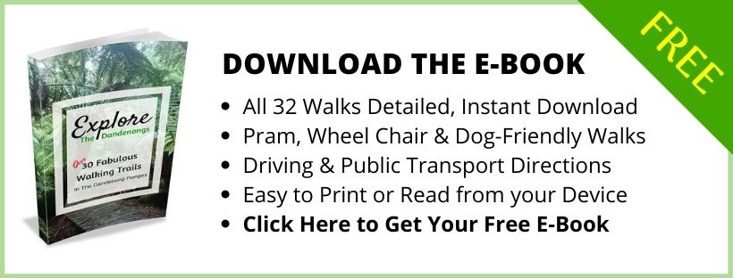 Free Download- Bushwalks in the Dandenong Ranges
